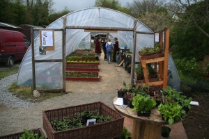 Polytunnel at Brigit's Garden that provides much of the vegetables for the restaurant.